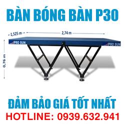 Bàn bóng bàn Bình Minh P30